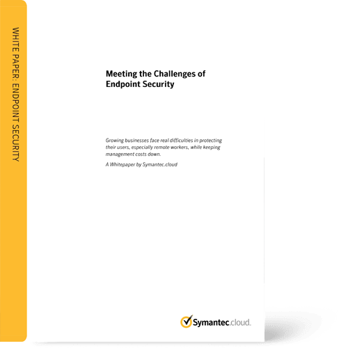 Whitepaper Symantec EndPoint Security Cloud